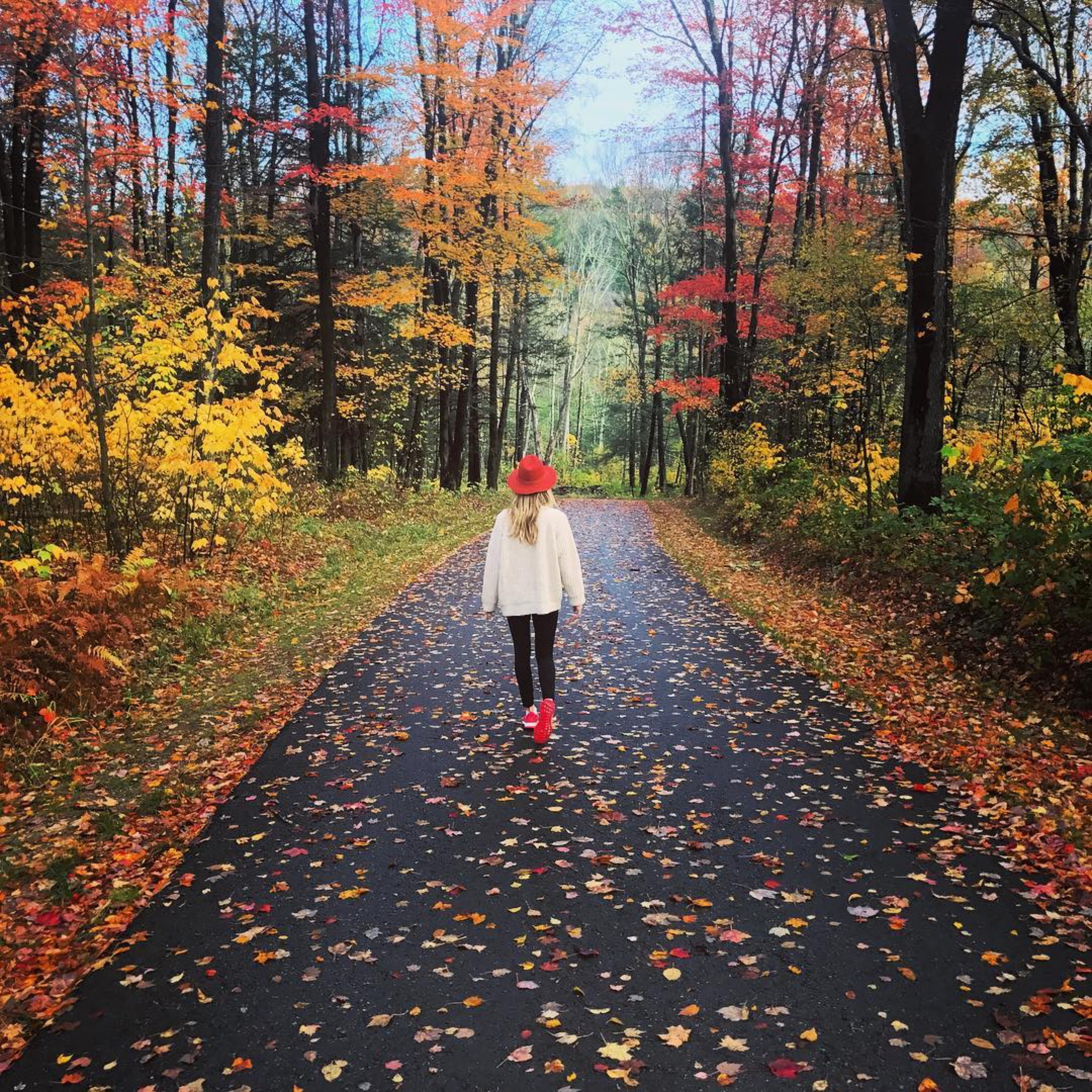 gabby bernstein walking among autumn leaves | beginner's guide to meditation