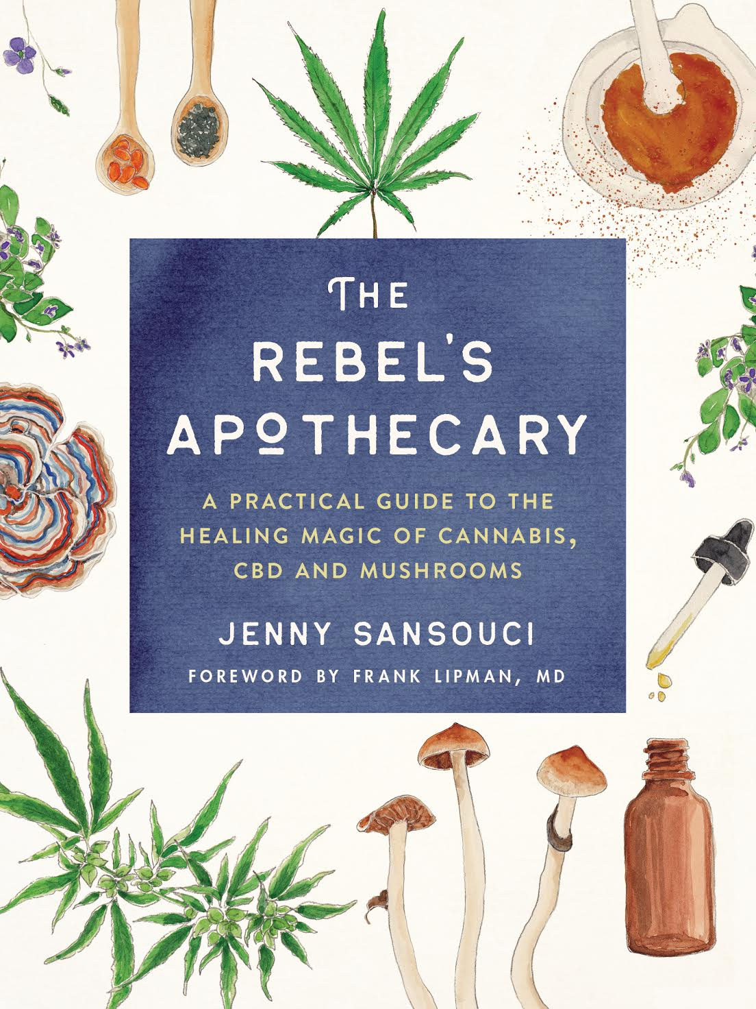 The Rebel's Apothecary by Jenny Sansouci | first-time author